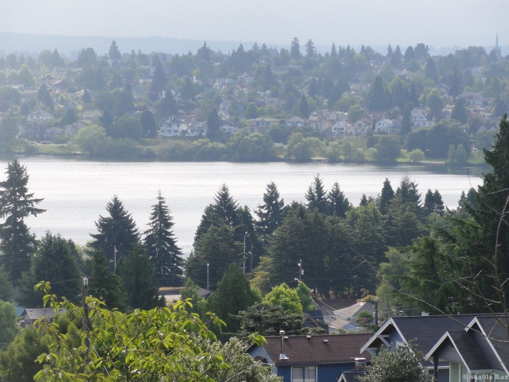View from green lake real estate